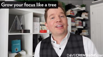 How to grow your focus like a tree
